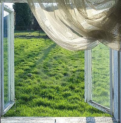 open-window-9012322