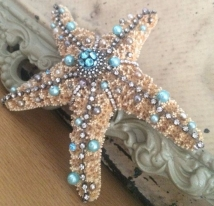 49b3ec604fce03f158be0937a2693b6f--starfish-crafts-starfish-art